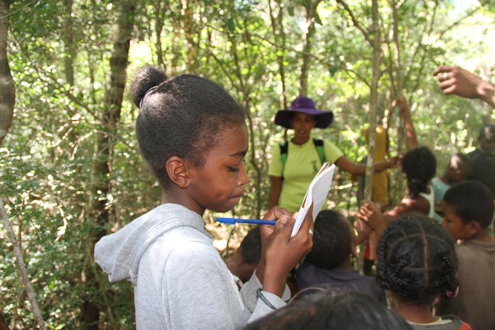 Le sifaka et les lépilémurs disent bonjour aux enfants