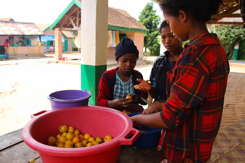 Une journée à la Ferme École de Tambohomandrevo