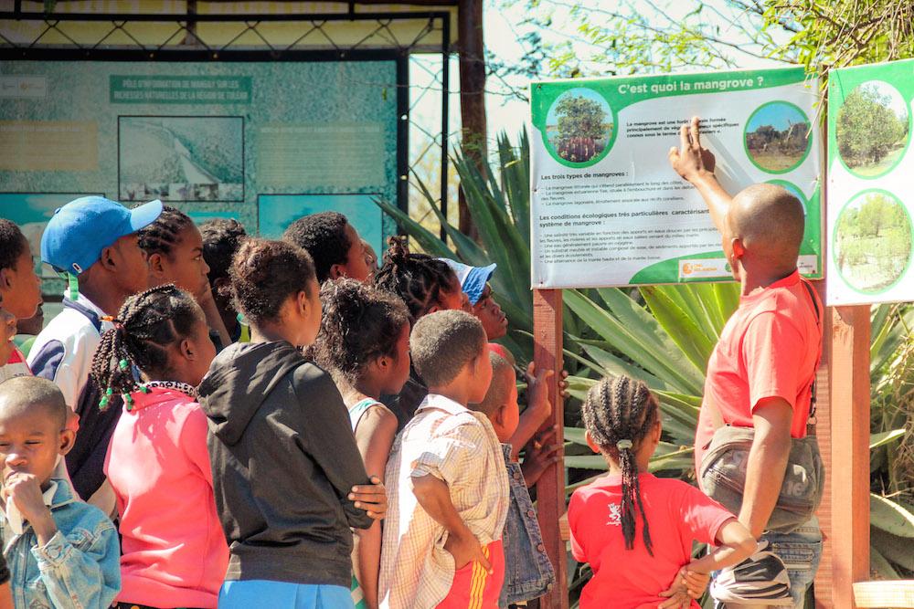 Eau de Coco engagée à jamais dans la réhabilitation de la mangrove