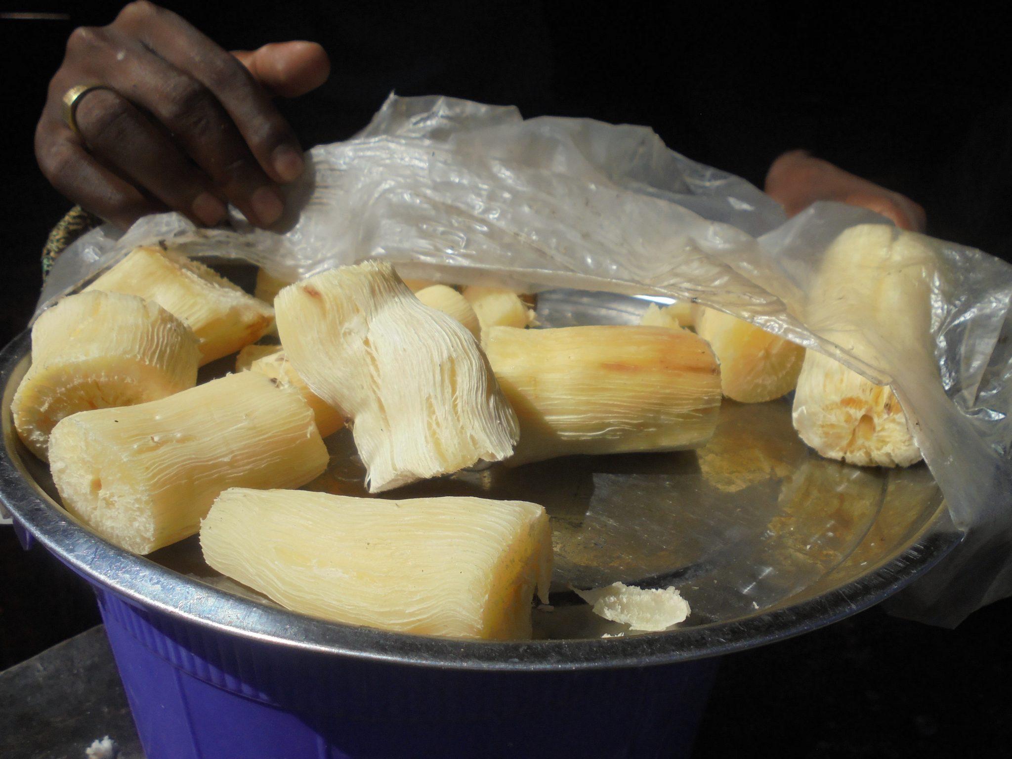 Thème du mois de Mai du Programme Namana:La récolte d'hiver est le manioc