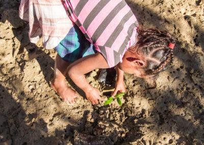 Réhabilitation de la mangrove