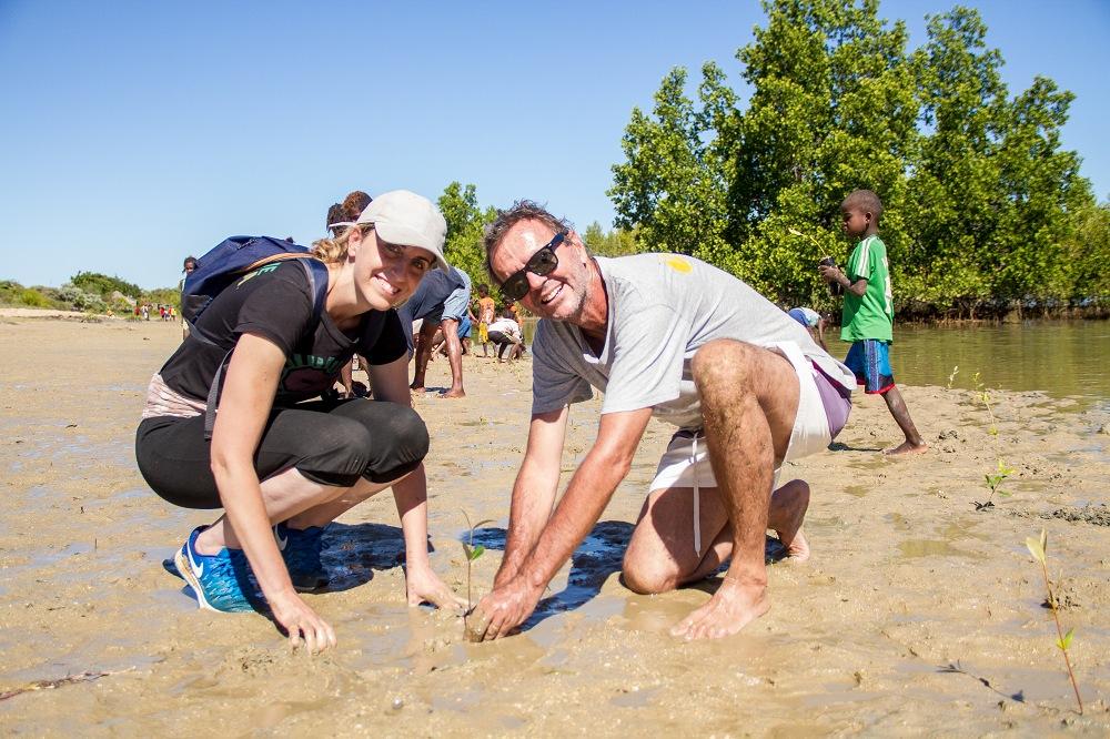Vers une restauration de la mangrove pour préserver les écosystèmes et les espèces qui en dépendent.