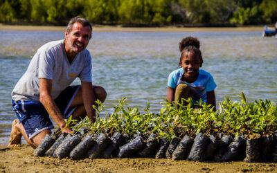 4 000 nouveaux palétuviers pour protéger l'environnement